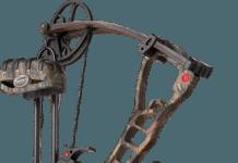 accessory-bow