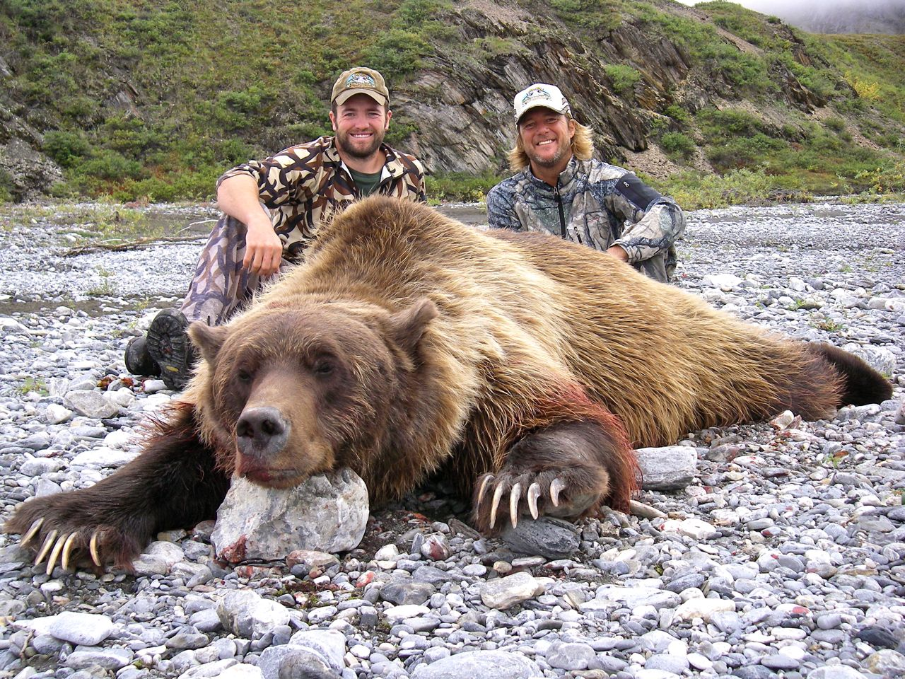 This Is An 8u00273u2033 B U0026 C Grizzly Boar Also Taken From The Arctic.