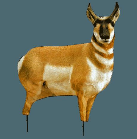 mt decoy antelope