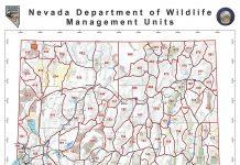 Nevada Hunting Units