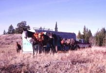 b2ap3_thumbnail_Horses-at-Trailer.jpg