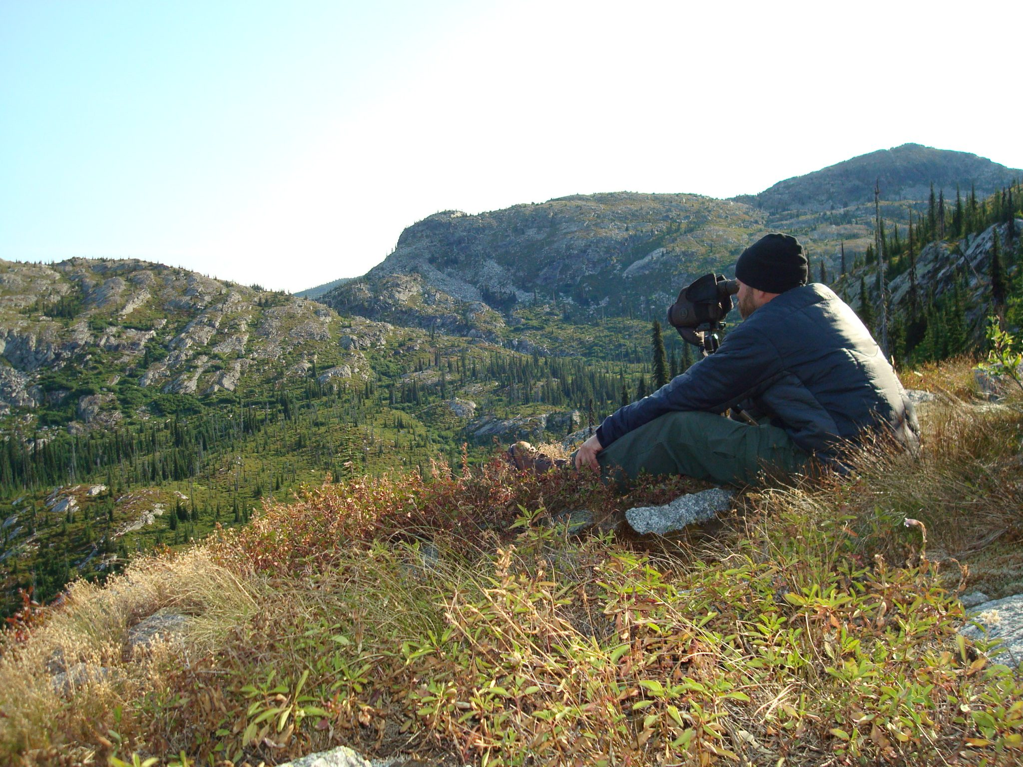 Searching the high country for a shooter