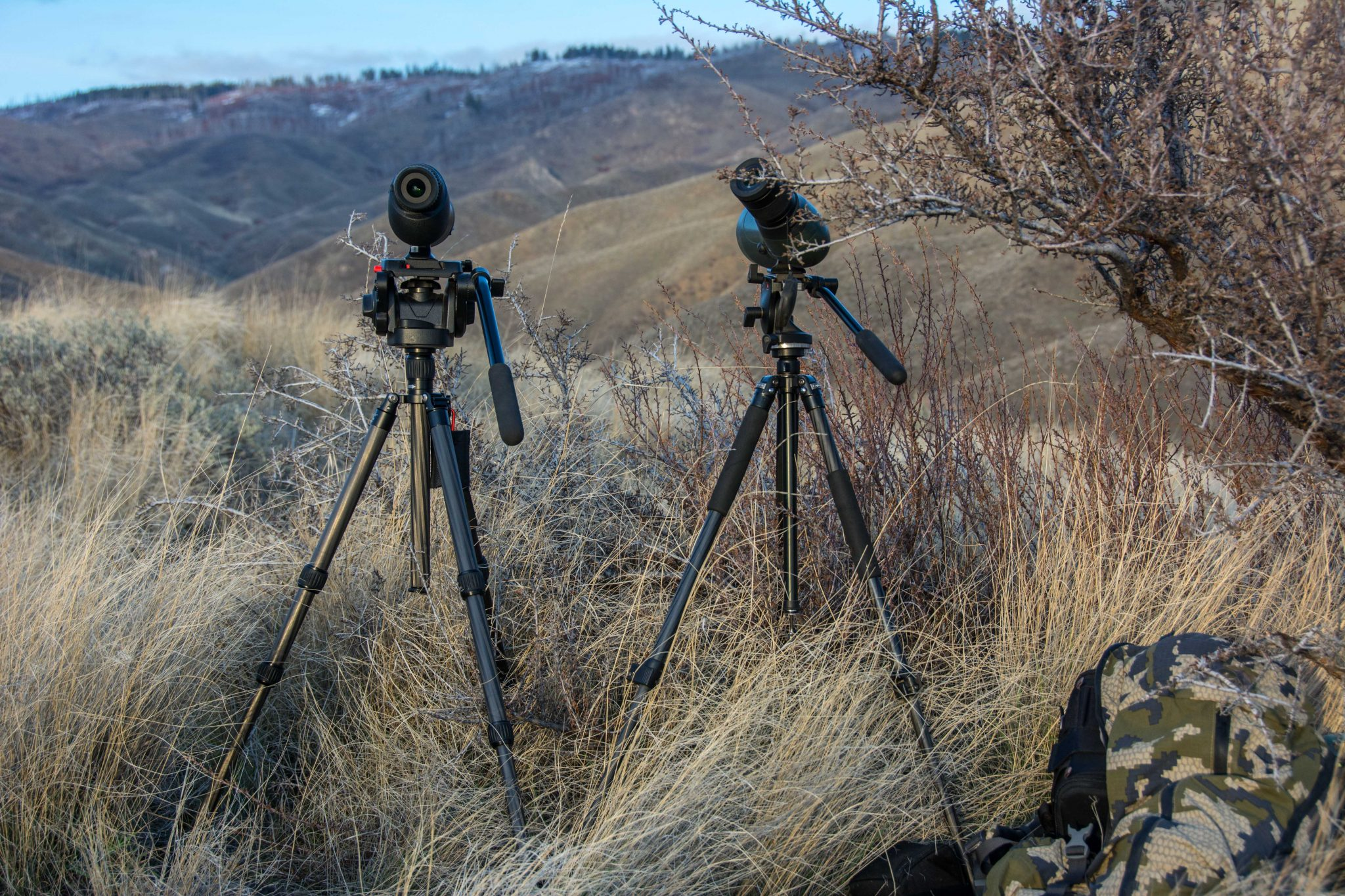 Glassing with both scopes