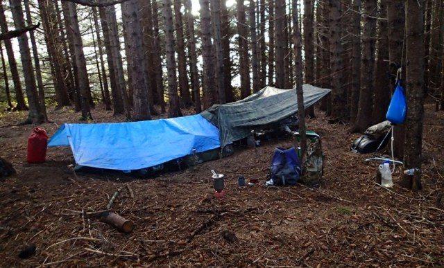 Tarp Shelter
