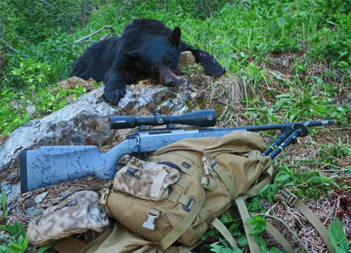 justing Bear and Rifle