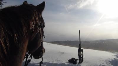 b2ap3_thumbnail_Horse--rifle-resized.jpg