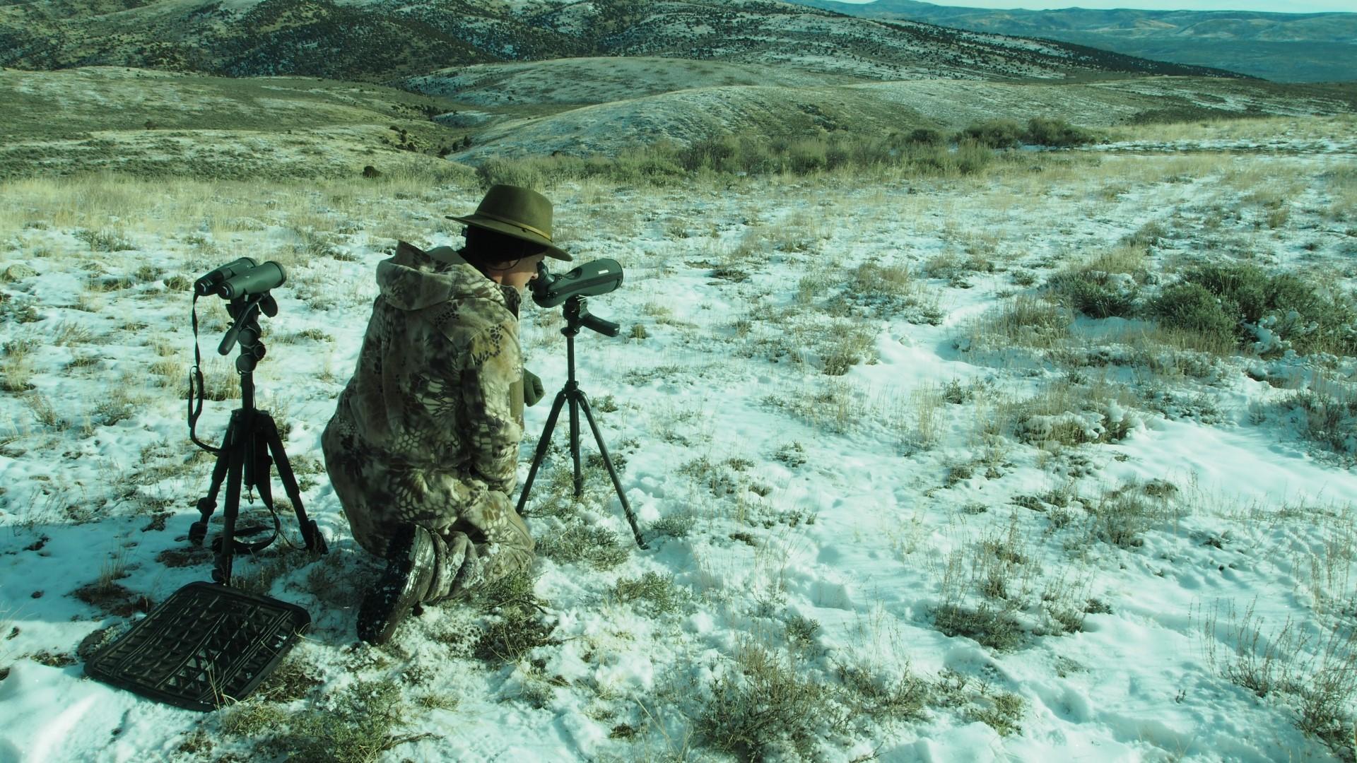 Krypek on the hunt Large